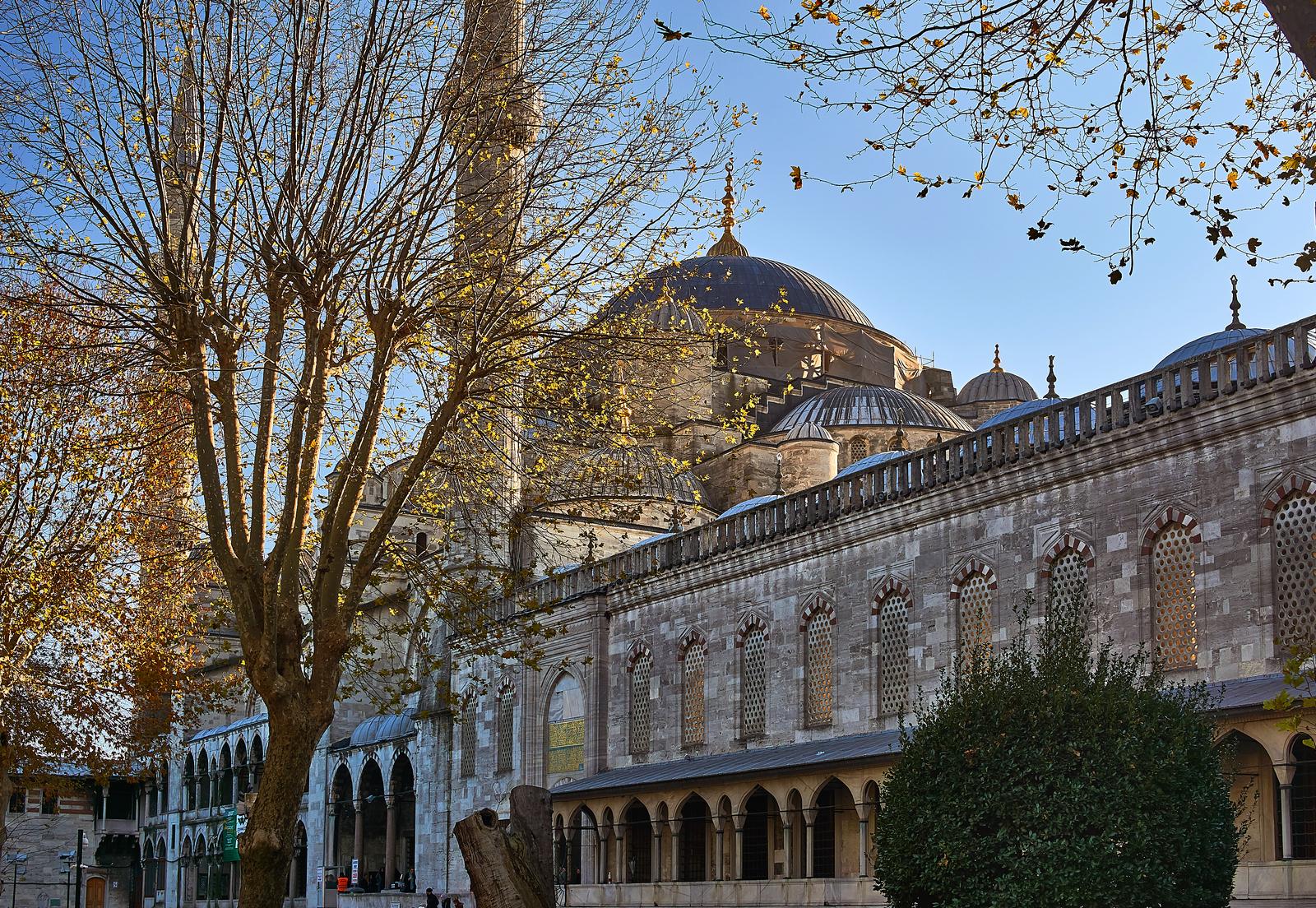 Как отдохнуть в Стамбуле в декабре