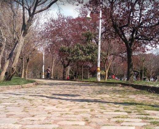 Парк Фенербахче в Стамбуле